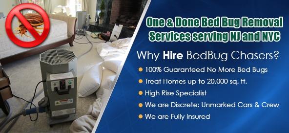 Philadelphia Heat Treatment For Bed Bugs