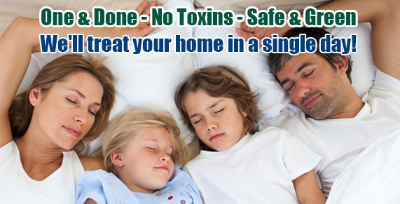 Bed Bug pictures Southwest Philadelphia PA, Bed Bug treatment Southwest Philadelphia PA, Bed Bug heat Southwest Philadelphia PA